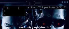 Winamp XP 1